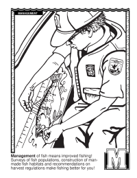 ABCs Coloring Book: M Is for Management