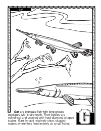 ABCs Coloring Book: G Is for Gar