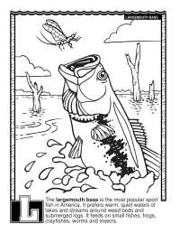 ABCs Coloring Book: L Is for Largemouth Bass