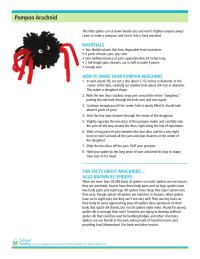 Pompon Arachnid